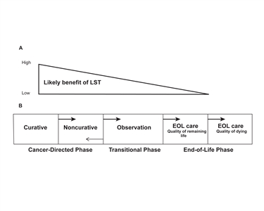 Diagram showing a phase model of planning the transition to end-of-life (EOL) care in advanced cancer.